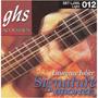LJ30L - Laurence Juber Signature Acoustic Guitar Strings
